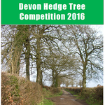 testDevon Hedge Tree Competition